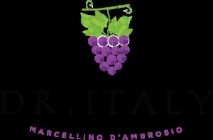 dr-italy-logo