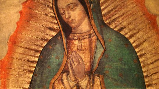 image our lady of guadalupe from the tilma of Juan Diego feast december 12 apparition tepeyac mexico roses
