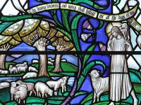 Negligent Shepherds - Augustine
