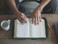 Catholics and Bible Study