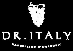 Dr.Italy.W-logo