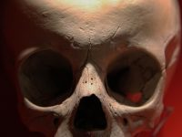 Struggling With Distractions? 3 Ways a Memento Mori Will Help