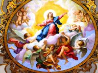 Many Titles of the Blessed Virgin Mary
