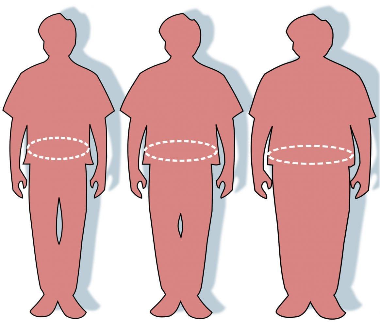 Obesity Statistics - Crossroads Initiative