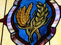 I Am God's Wheat – Ignatius of Antioch