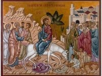 Palm Sunday – Victory of Humility