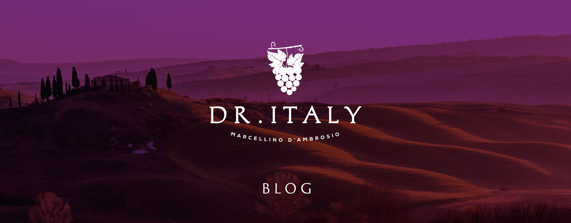Dr. Italy's Blog