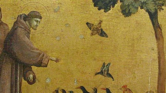 St. Francis preaching to the birds creation environment October 4 piety