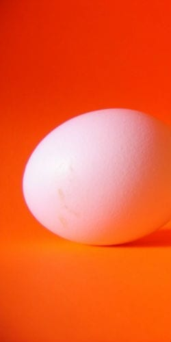 an egg Dazzled by the Brightness of God's Light! - Anselm masonry