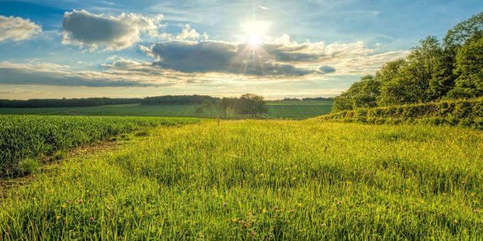 Good Shepherd green pastures eternity know shepherd gregory great