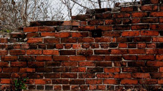 hadrian's tumbling wall parable vineyard wicked tenants sour grapes fruit 27th Sunday A muro uvas labradores Viña