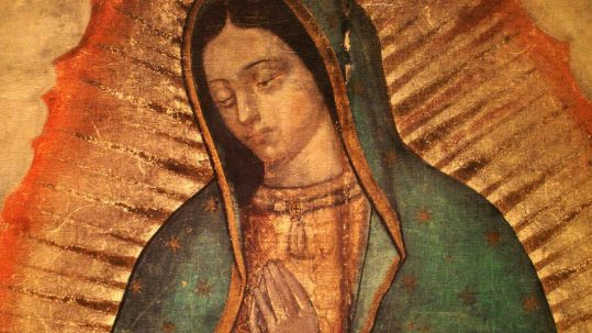image our lady of guadalupe from the tilma of Juan Diego feast december 12 apparition tepeyac mexico roses facebook