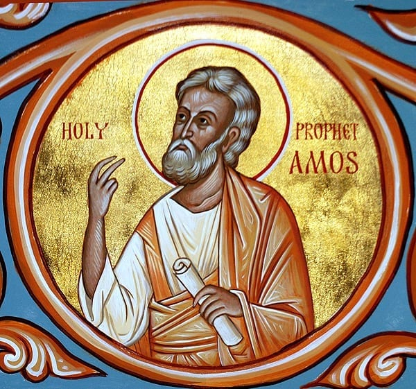 Amos Prophet 15th Sunday ordinary time
