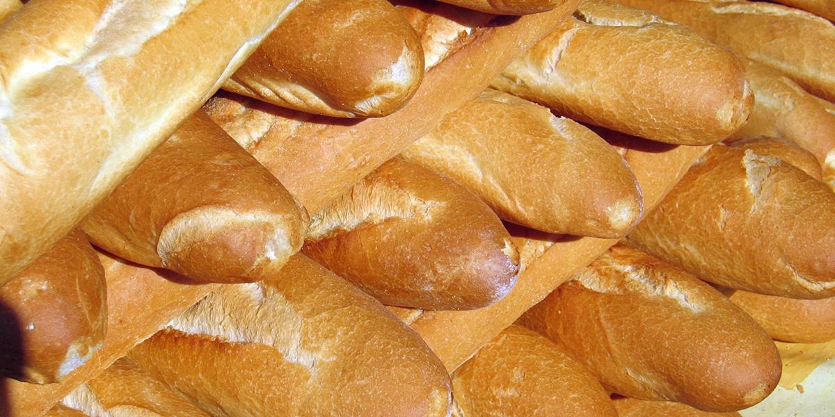 elijah's supernatural bread of life food for the journey eucharist 18th Sunday B Elia soprannaturale pane di vita cibo per il viaggio eucarestia 18 esima domenica B