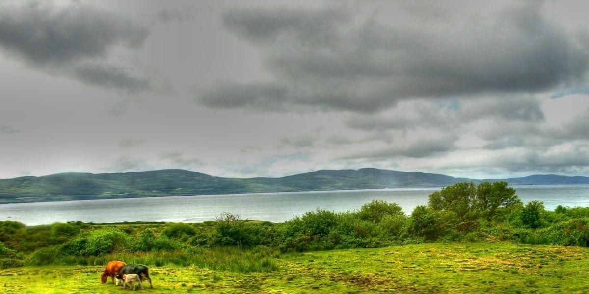 cloudy hills river horses cana facebook