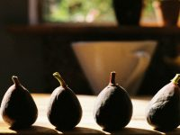 Lenten Fasting and the Barren Fig Tree