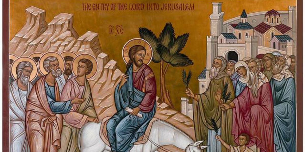 humility victory Palm passion Sunday victory of humility triumphal entry Jerusalem donkey palme passione domenica vittoria dell'umiltà entrata trionfale Gerusalemme asino facebook