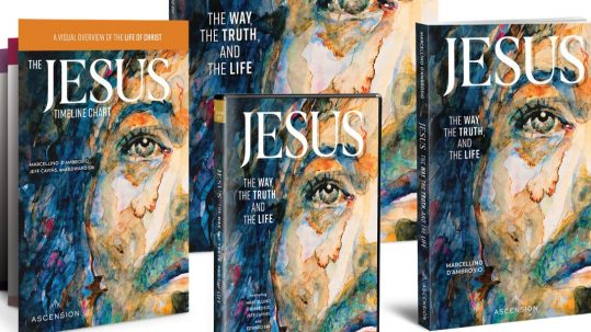 Jesus the way the truth and the life holy land series book dvd timeline bible study marcellino D'ambrosio Dr. Italy Ascension Press
