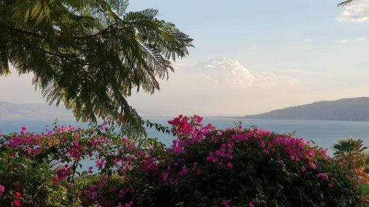 mount of beatitudes sea Galilee view gardens flowers holy land sea