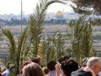 Mount of Olives and the Palm Sunday Road - Podcast