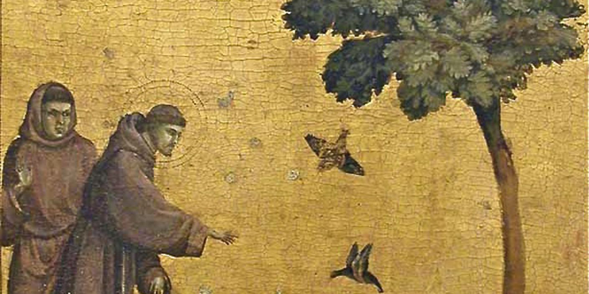 St. Francis preaching to birds Giotto creation environment October 4 animals piety