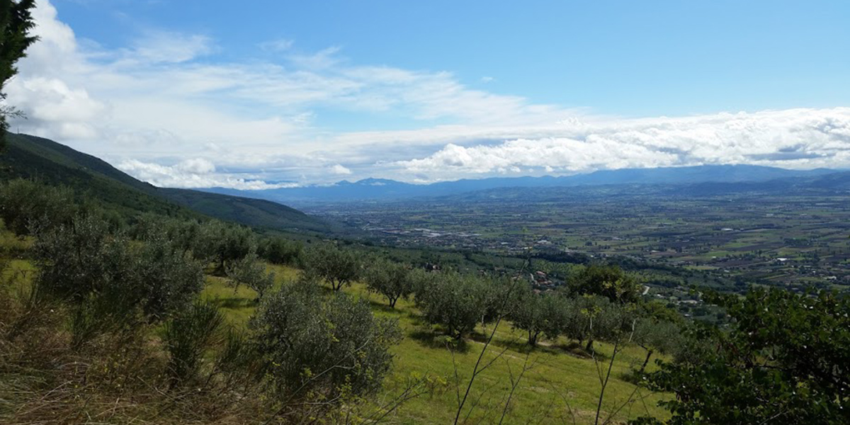 Spoleto Valley from San Damiano Assisi